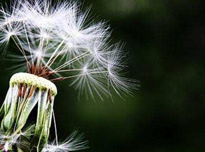 Penki patarimai padėsiantys išvengti akių alergijos